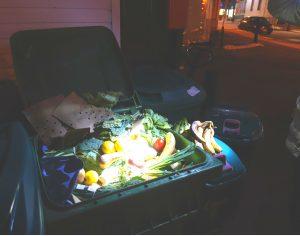 Produce freezes fast in the winter. Per Kohn, larger dumpsters are preferable as they retain heat longer   Photo - Liam Harrap