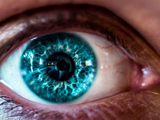 Within sight: How scientists aim to return vision to the blind