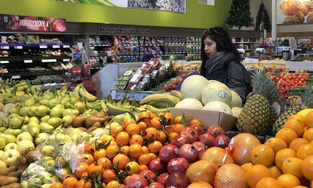 Canadians are wasting food and losing money, new study says